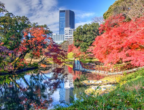 Where to Stay in Tokyo for First-Timers