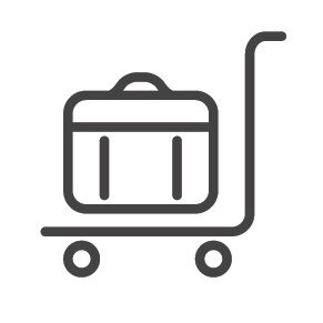 Moving Luggage Icon