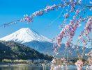 Top 10 Japan Travel Destinations For 2019