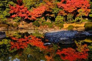 Gardens in Fukuoka