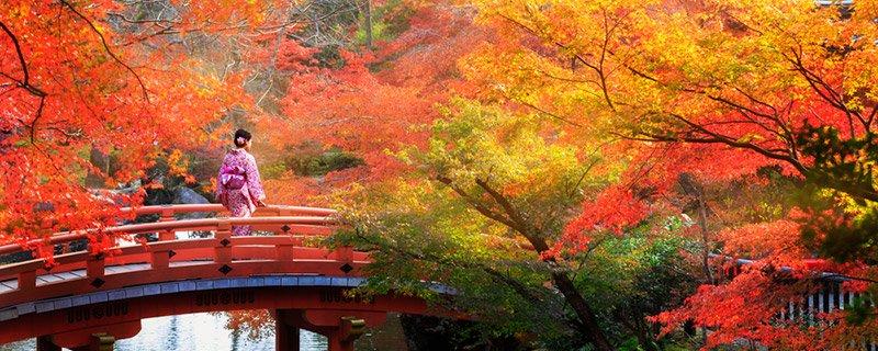 Japan-Gardens