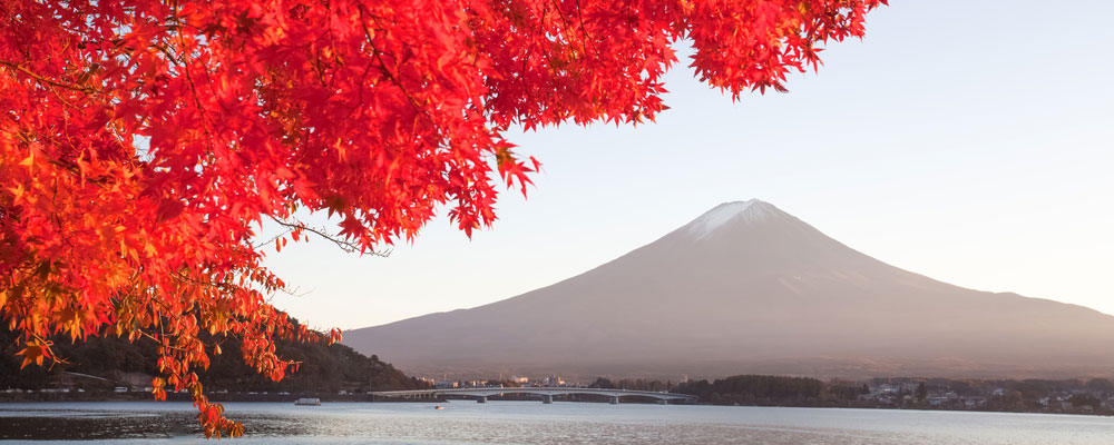 Mt-Fuji-Autumn-Header